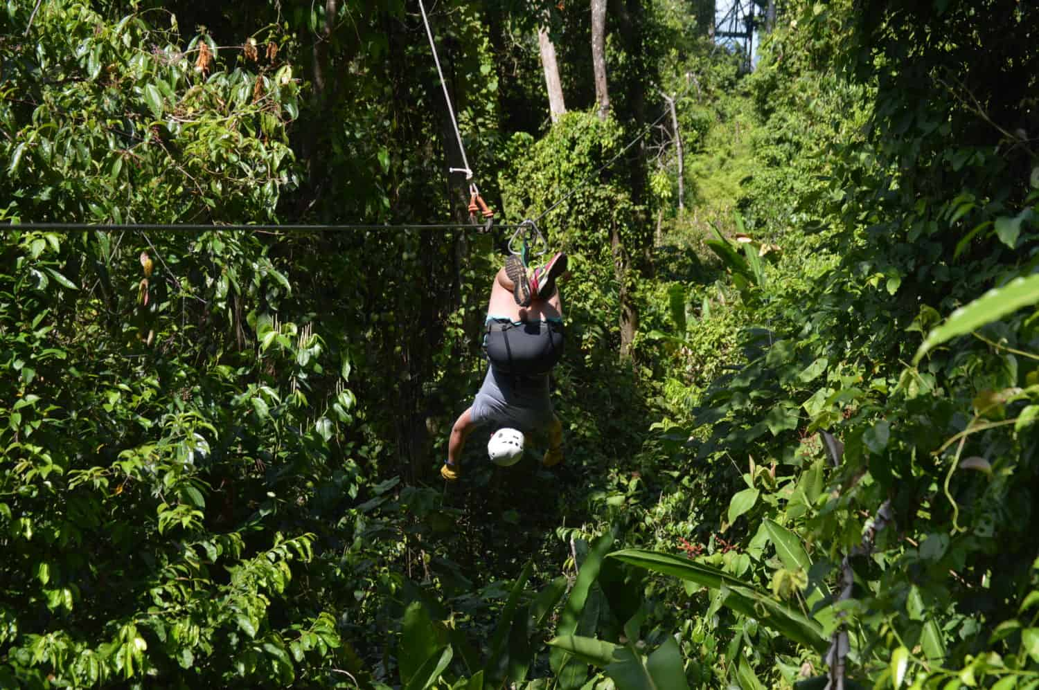 Optional ziplining upside down...not pretty or comfortable, but fun to try once!