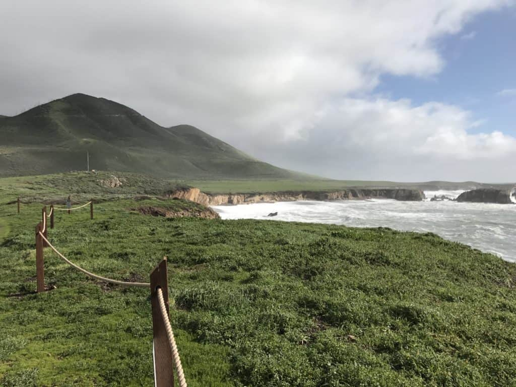 If you're in the San Luis Obispo area, make sure to hike the Point Buchon Trail