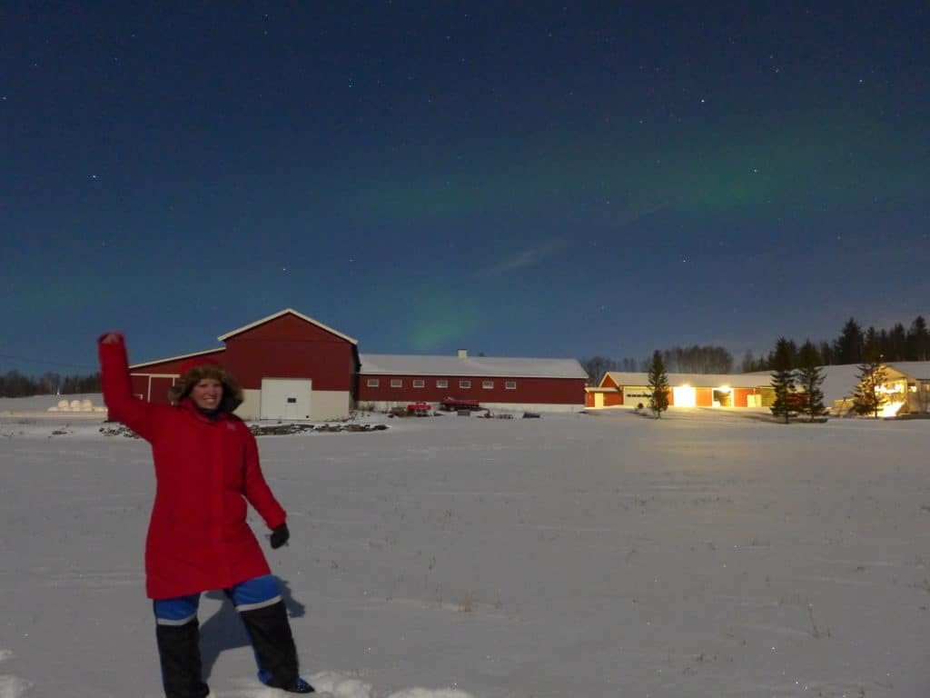 A Northern Lights tour is a great way to have a better chance of seeing them when visiting in the winter...chasing the lights in Tromso, Norway, 200 miles inside the Arctic Circle!