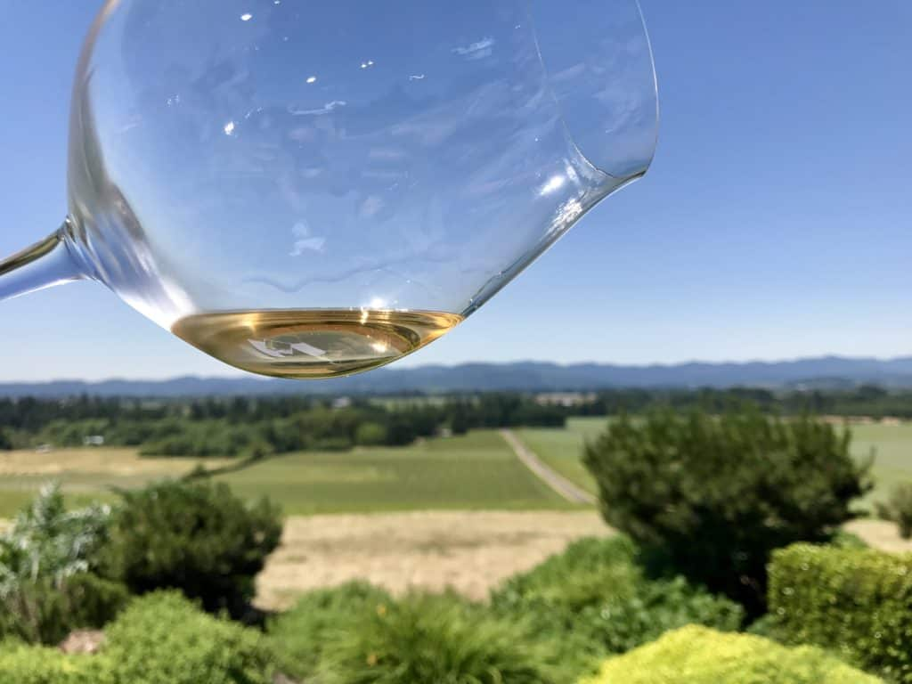 Ann Amie Vineyard, what to do in Willamette Valley | which wineries to visit, where to eat, how to plan your trip | Everything you need to know for a visit to the Willamette Valley, Portland itinerary, wine weekend in Oregon, the perfect girls' trip #willamette #wineries #oregon