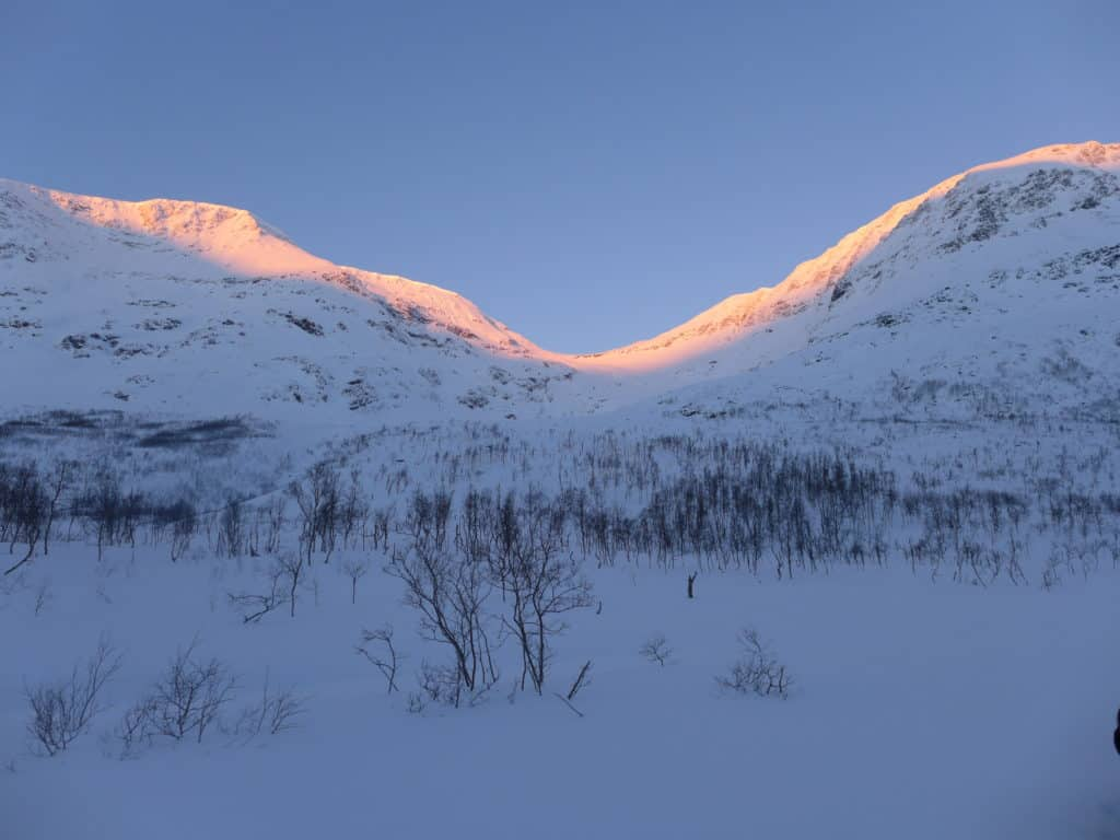 "A beautiful Polar Night ""sunrise"" at 11am, dog sledding at Camp Tamok in Tromso, Norway 