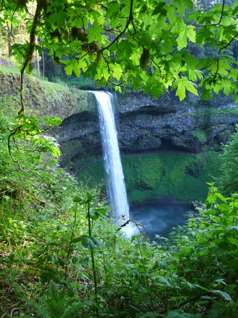 South Falls | Oregon's Trail of Ten Falls doesn't get as much attention as Multomnah, but it's totally stunning and offers 10 waterfalls, a moderately easy hike, and is easy driving distance from Portland | why you should hike the Trail of 10 Falls in Silver Falls State Park #oregon #waterfalls #trailoftenfalls