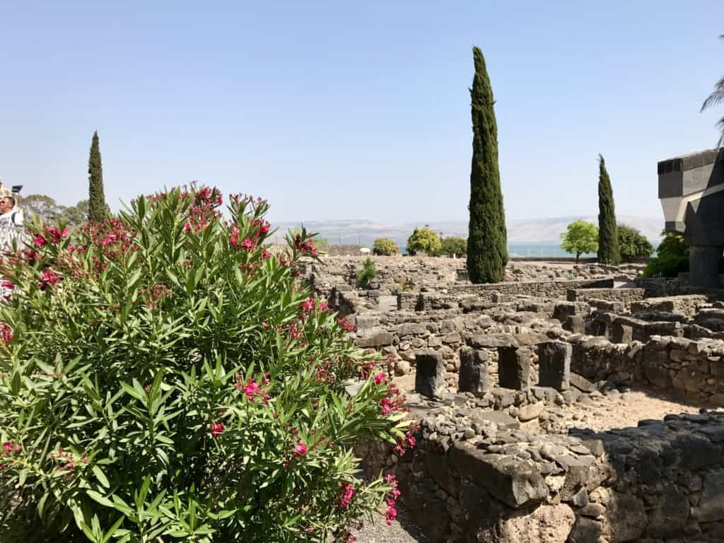 The ruins at Capernaum | A day trip from Tel Aviv to northern Israel, covering Caesarea, Tel-Megiddo, the Sea of Galilee, Capernaum, the Mount of Beatitudes, Tiberias, and Akko | what to do in Israel | There's so much to visit in such a small area, you can have a jam-packed day driving from Tel Aviv or Jerusalem but cover so many historic sites and towns | Israel itinerary ideas, Christian history trips, visit the Jesus trail, bible archaeology tours, what to see in Israel, Jerusalem day trips #israel #seaofgalilee #telaviv