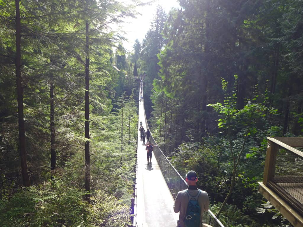 Get to the Capilano Suspension Bridge Park as soon as it opens for the best chance at great pictures!
