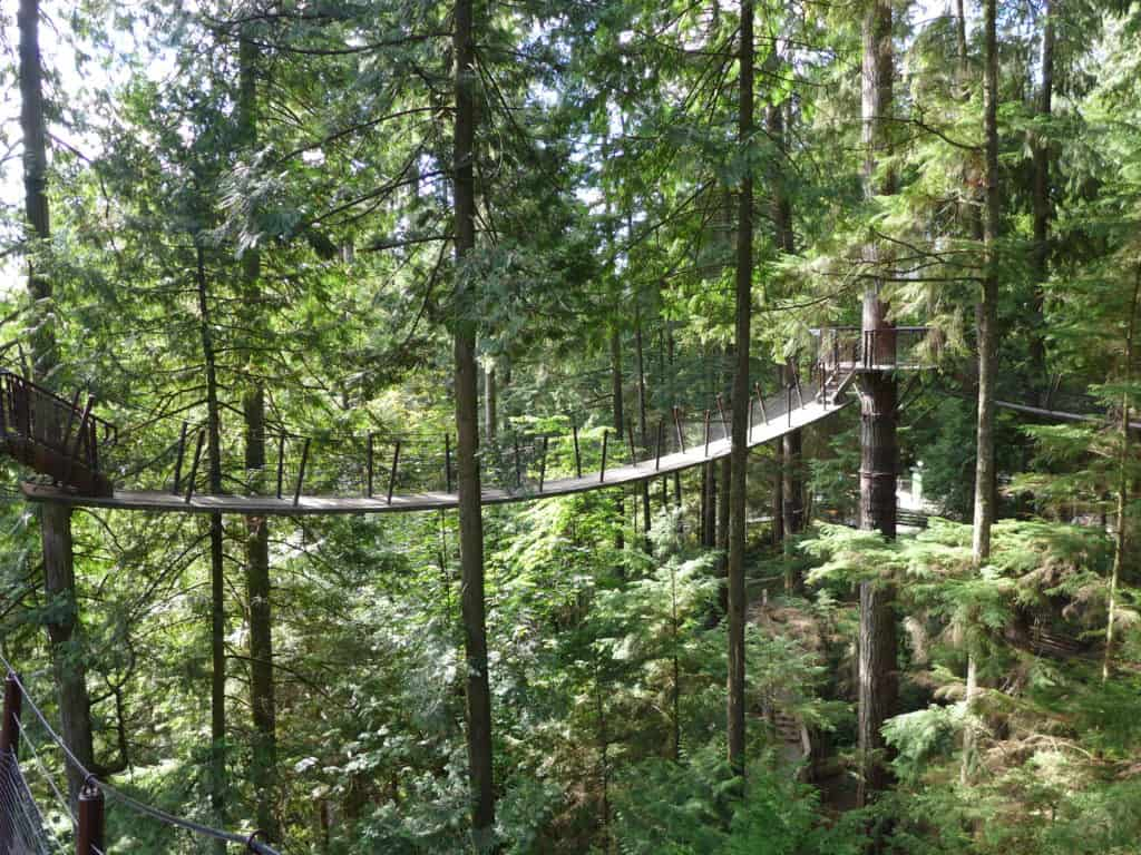 Vancouver in 2 days...Treetop Adventure at the Capilano Suspension Bridge Park!