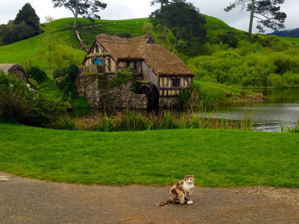 Hobbiton is lush, green, and charming (if a bit crowded)...here are some tips to avoid the crowds and get the best pics