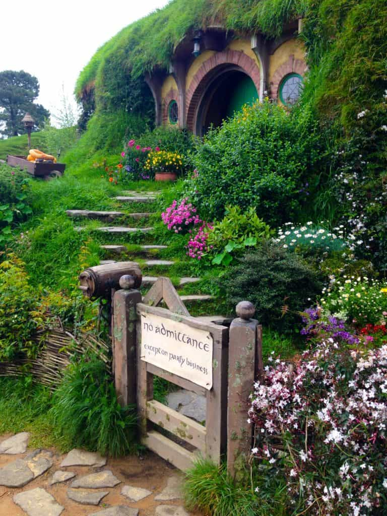 Visiting Hobbiton, New Zealand | If you're a fanatic or even casual fan of Lord of the Rings, Hobbiton is a must-visit if you're in New Zealand. See how movie magic happens...tips for making your visit awesome! #hobbiton #newzealand #lotr