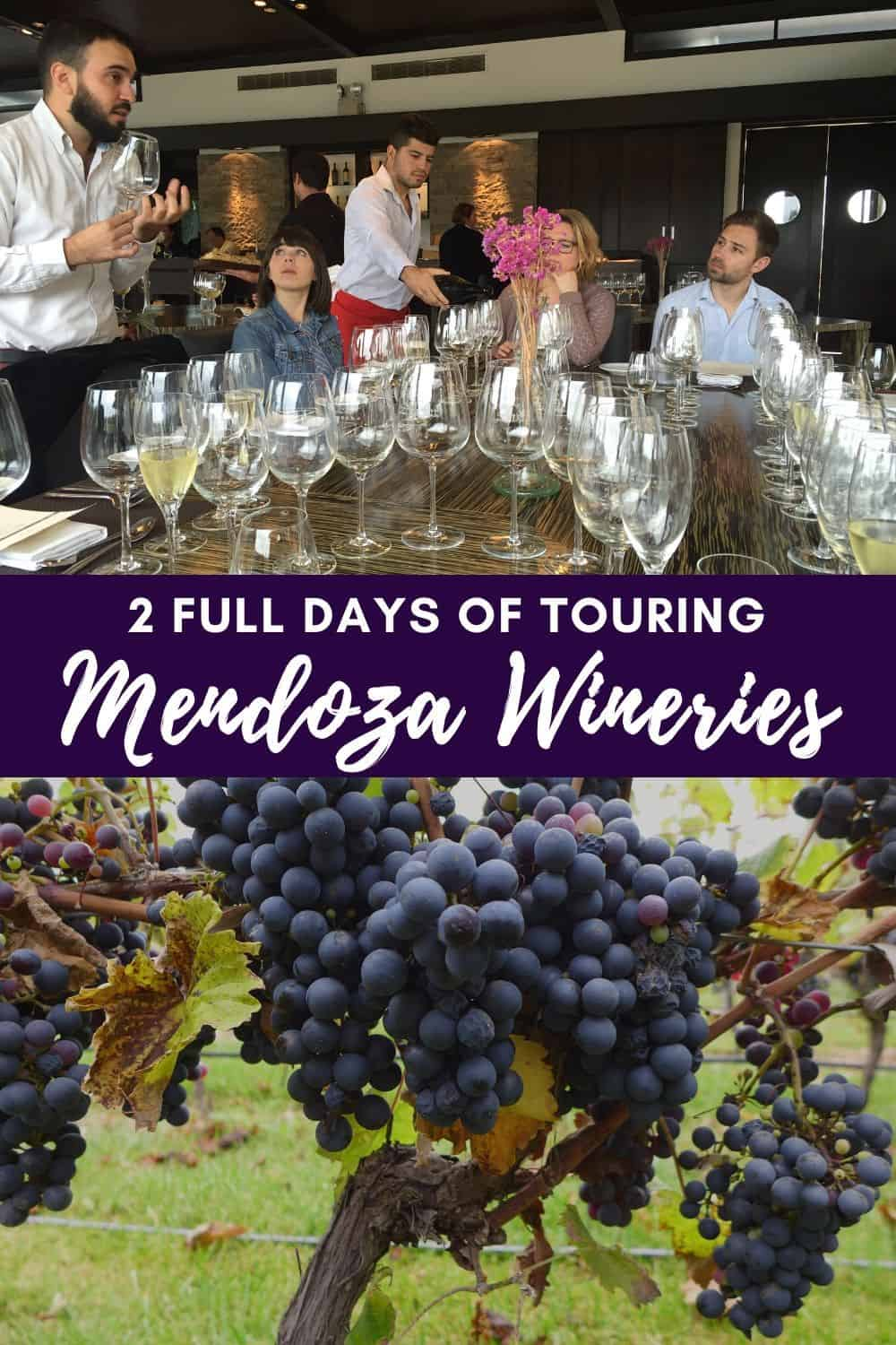 Mendoza Wine Tours, a Must on Any Argentina Itinerary | Argentina's food and wine are amazing, and Mendoza is one of the best places to experience it! How to plan a winery tour trip in Argentina #argentina #mendoza #wineries