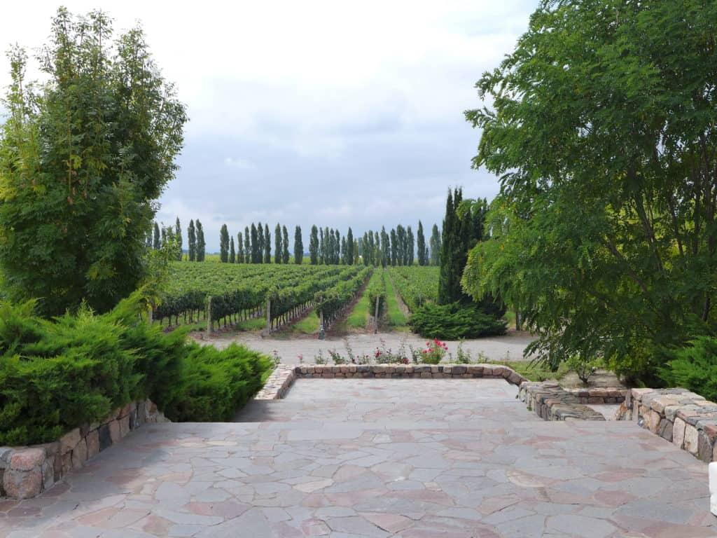 Beautiful Andeluna Winery in Mendoza