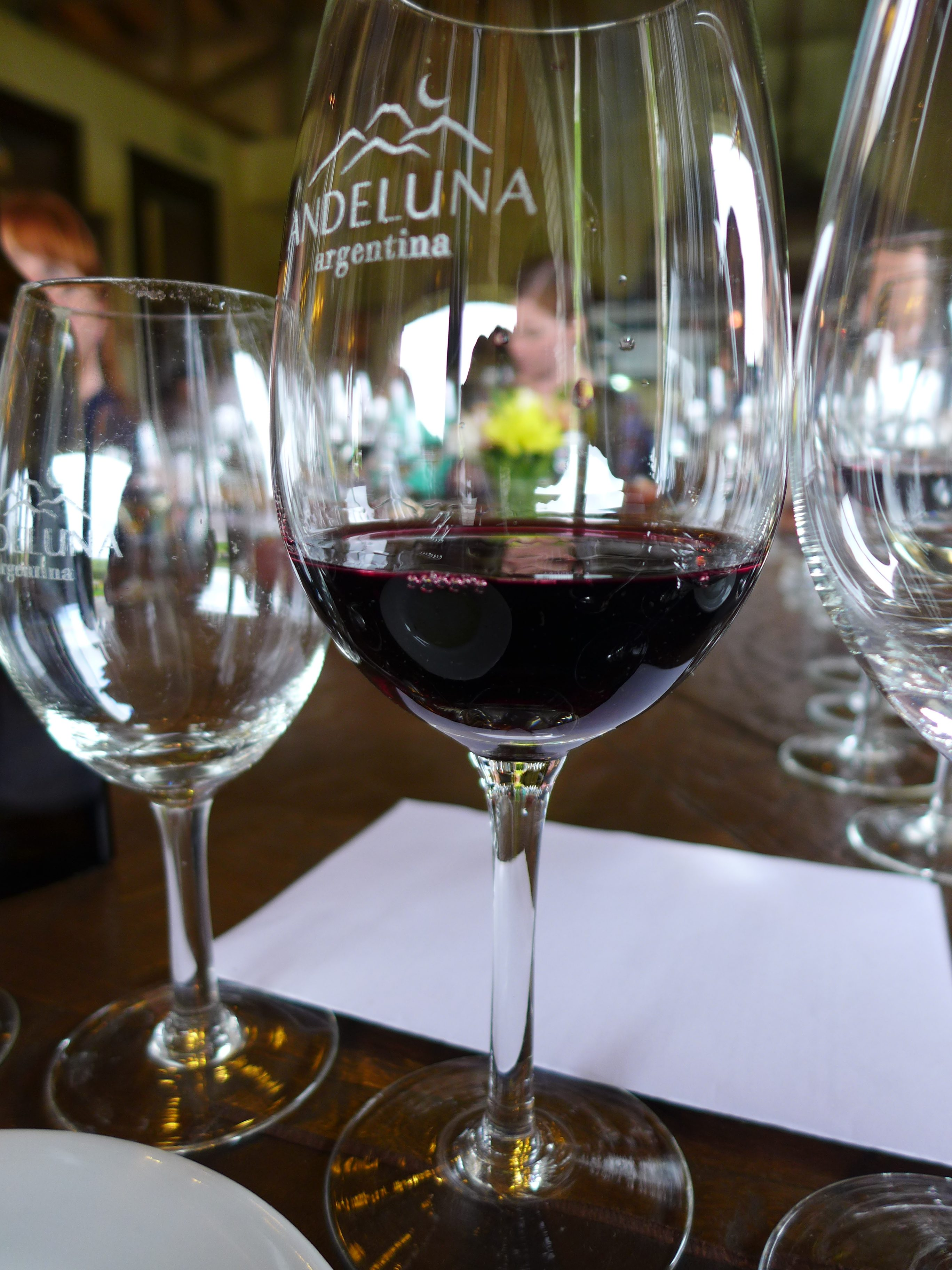 Visiting Andeluna during our Mendoza winery tours
