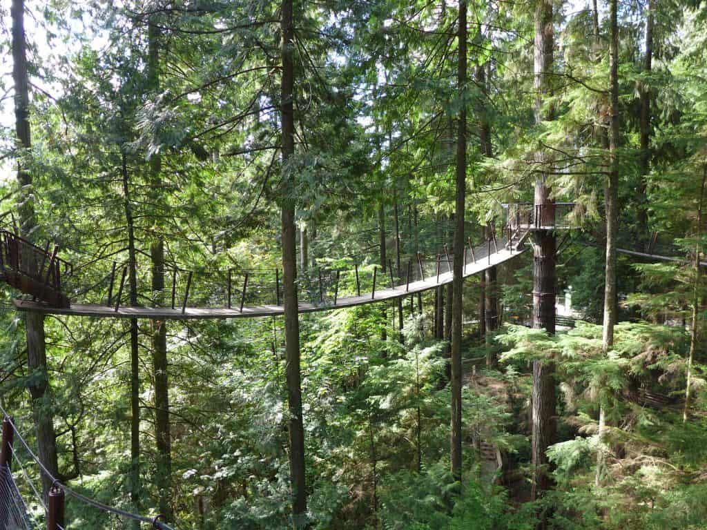 Capilano suspension bridges outside Vancouver