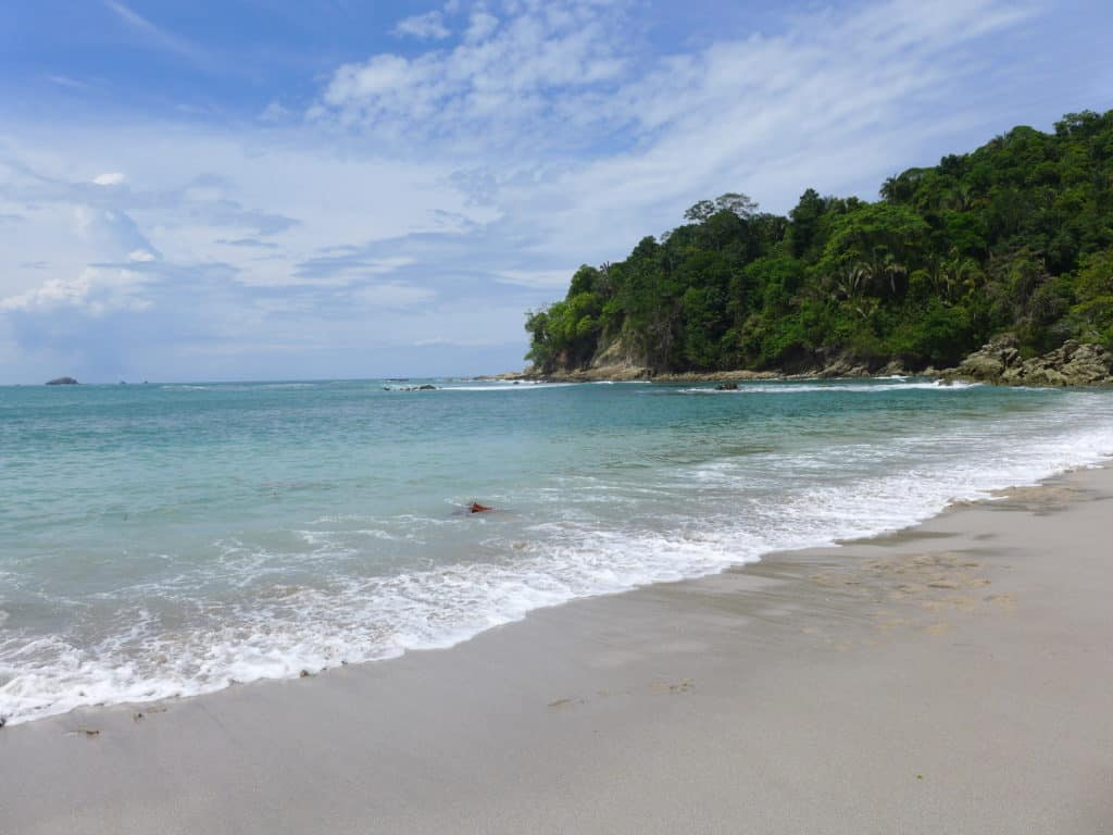Manuel Antonio has stunning beaches, tons of wildlife, & a lot to do--the ultimate guide to planning your Costa Rica trip!
