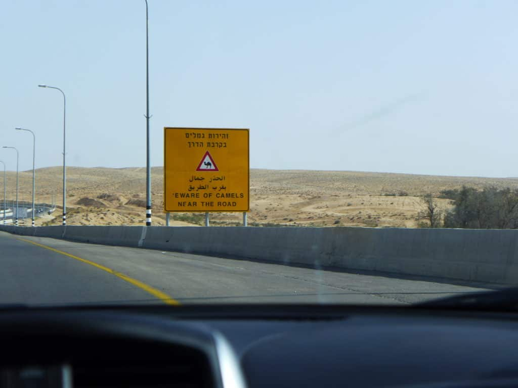 I loved the camel crossing signs driving from Tel Aviv to Eilat
