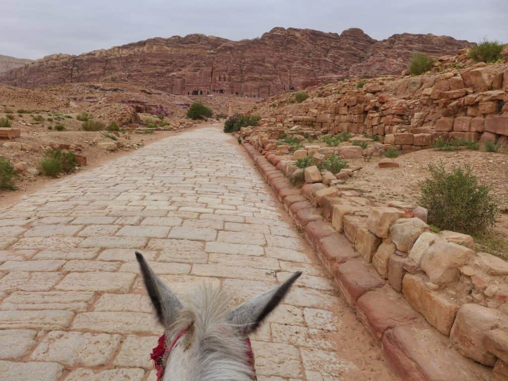 Tips for visiting Petra, the ultimate first-timer's guide | how to plan a self-guided visit to Petra, how to visit Petra, what to do in Jordan, Petra travel guide, travel tips for Petra, where to stay in Wadi Musa #petra #jordan #bucketlist
