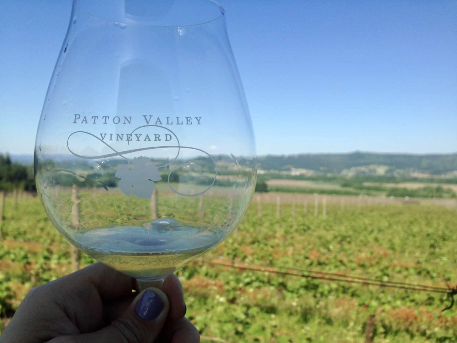 Willamette Valley...wineries to visit, where to eat, how to plan your trip | Everything you need to know for a visit to the Willamette Valley, Portland itinerary, wine weekend in Oregon, the perfect girls' trip #willamette #wineries #oregon