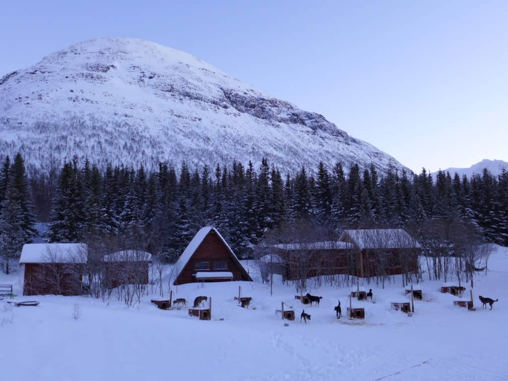 The dog houses at Camp Tamok, Norway