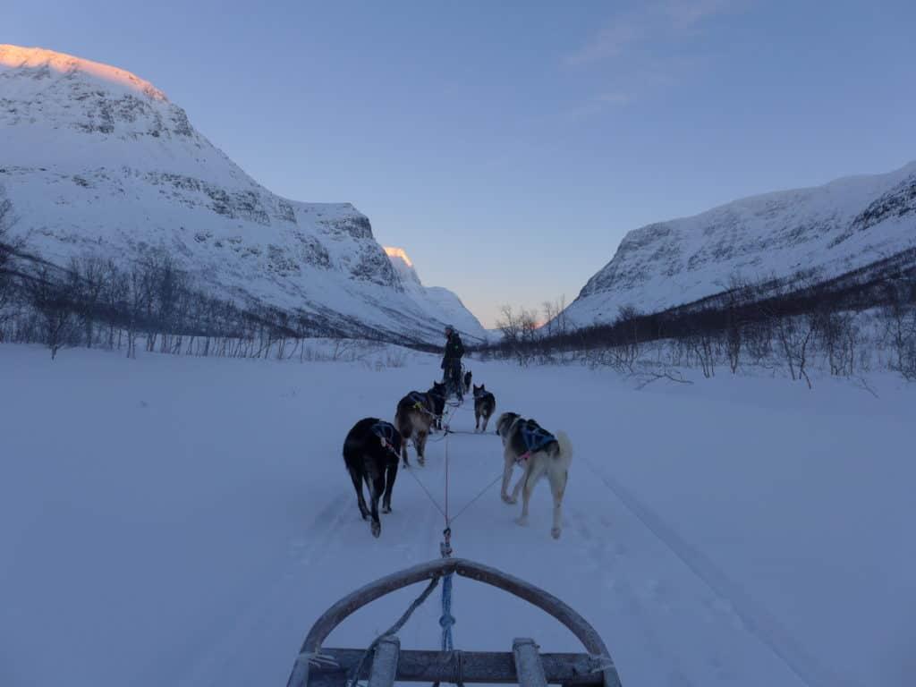 Dog sledding at Camp Tamok in Tromso, Norway