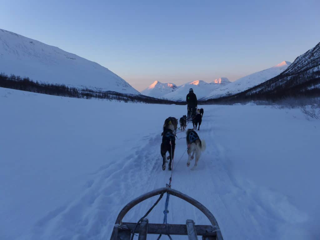 Dog sledding is a wintertime bucket list adventure! 3 Days in Tromsø, Norway During Winter | One Girl, Whole World
