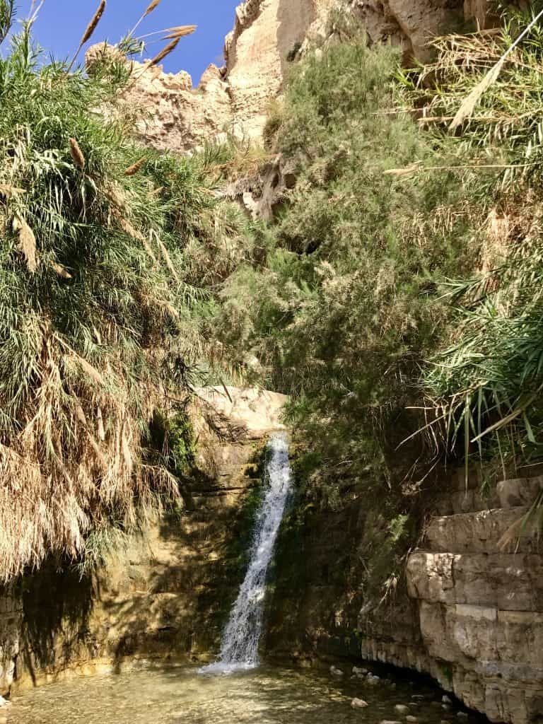 If you're spending one week in Israel and Jordan, make time to visit the oasis of En Gedi
