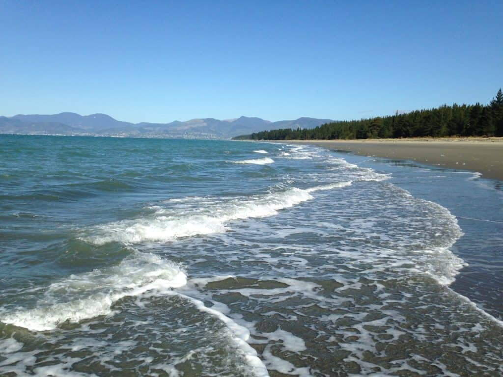 Rabbit Island's beach near Nelson, New Zealand | One Girl, Whole World