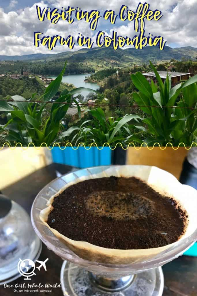 Why You Should Visit A Coffee Farm in Colombia | Colombia is known for its coffee, and I absolutely loved learning about how it's grown, harvested, and processed to make the drink I adore so much! A coffee tour day trip from Medellin with El Penon and Guatape. #coffee #tour #medellin #colombia