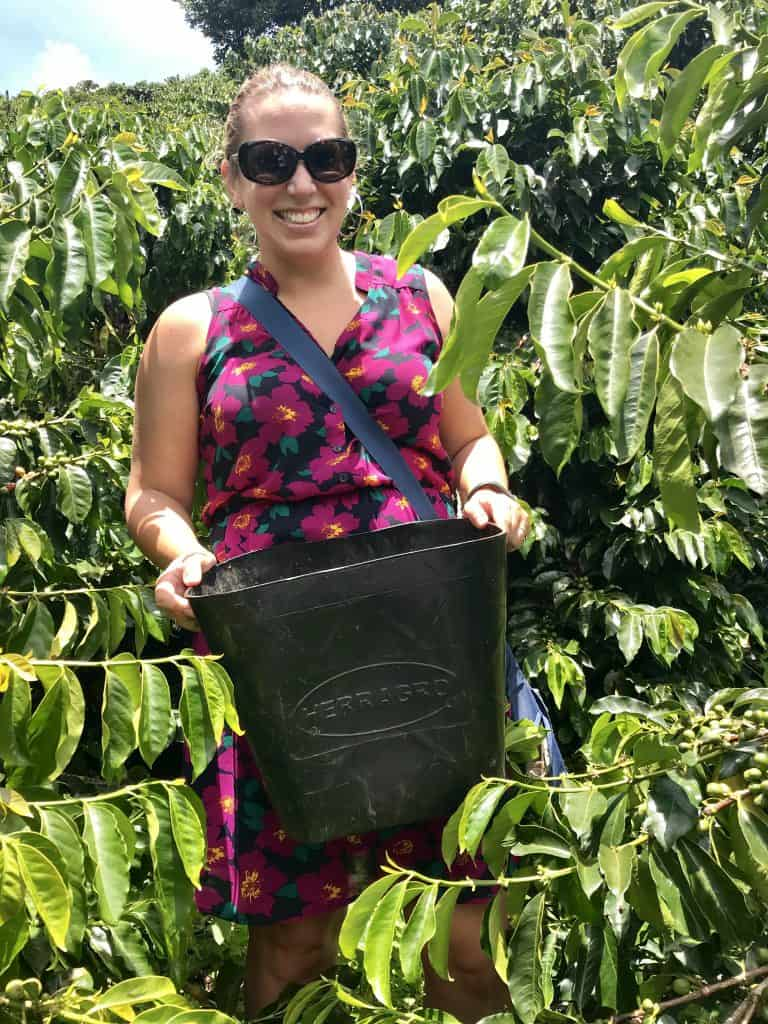 A coffee farm tour in Colombia, the perfect day trip from Medellin | Colombia is known for its coffee, and I absolutely loved learning about how it's grown, harvested, and processed to make the drink I adore so much! A coffee tour day trip from Medellin with El Penon and Guatape.