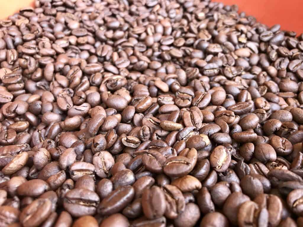 If you're visiting Medellin, Colombia, make sure to do a coffee farm tour | One Girl, Whole World