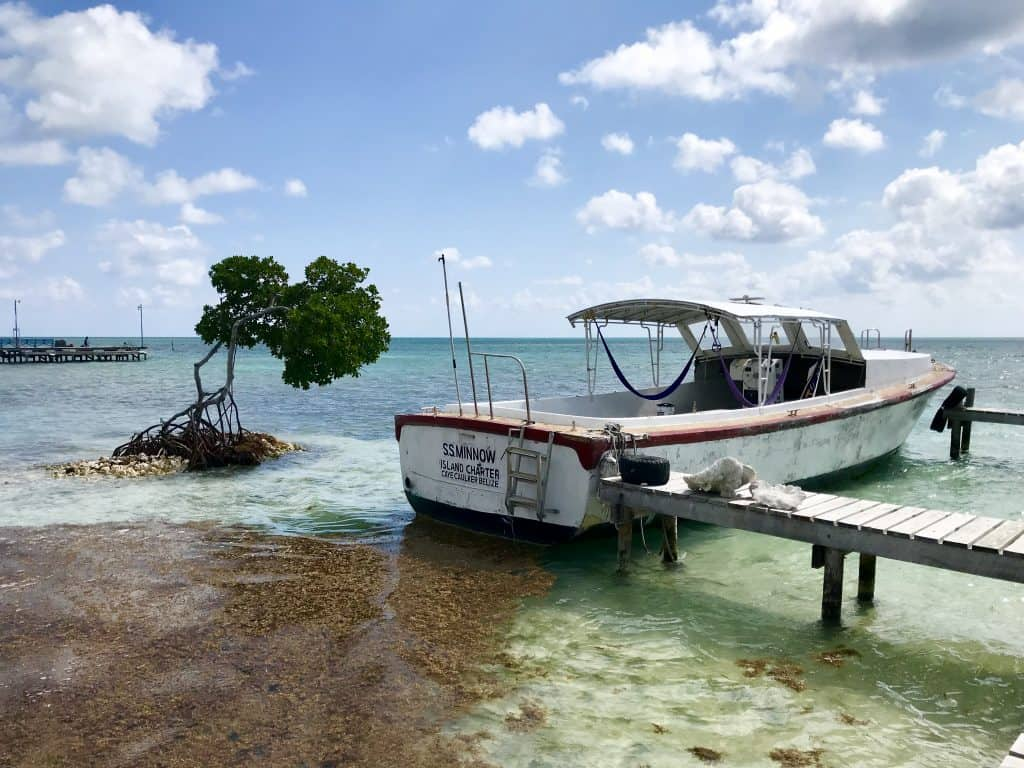 Meh beaches and 4 other reasons you won't like Caye Caulker, Belize | One Girl, Whole World