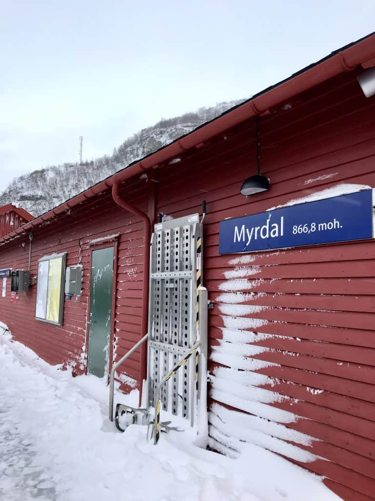 Why the Norway in a Nutshell tour in winter will below your mind!