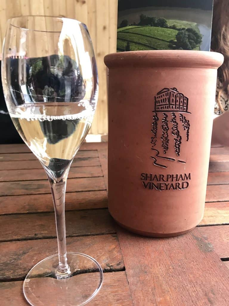 Wine tasting at Sharpham Estate in the Devon region, England