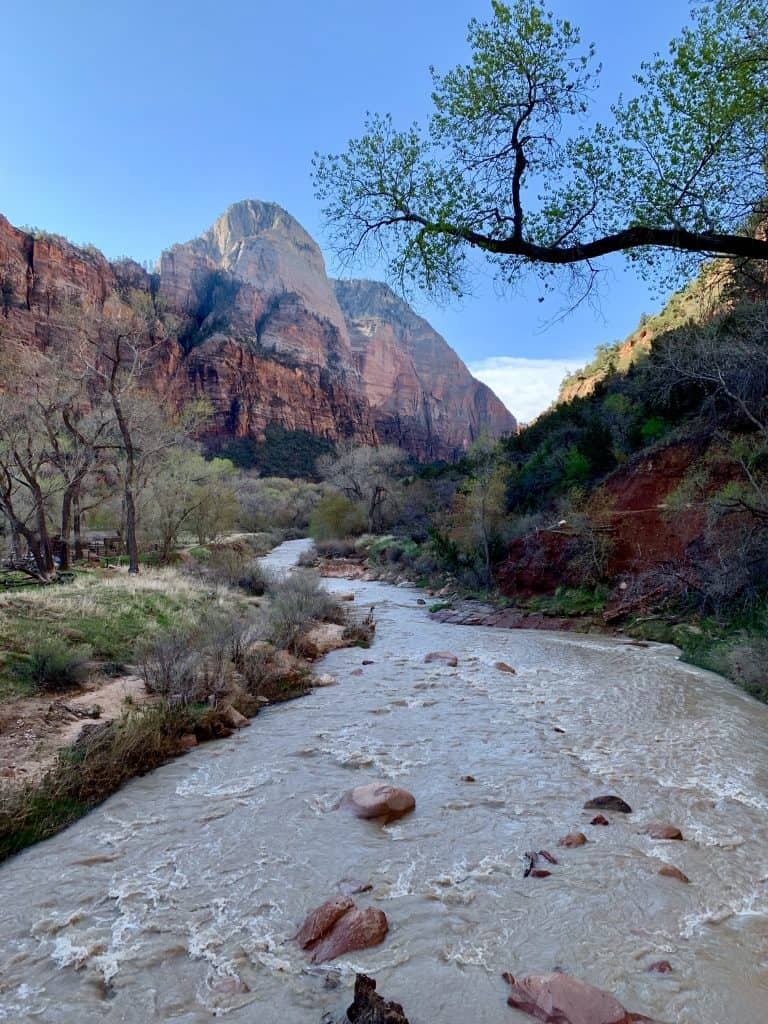Things to do in Zion National Park...some of the easy hikes you can take