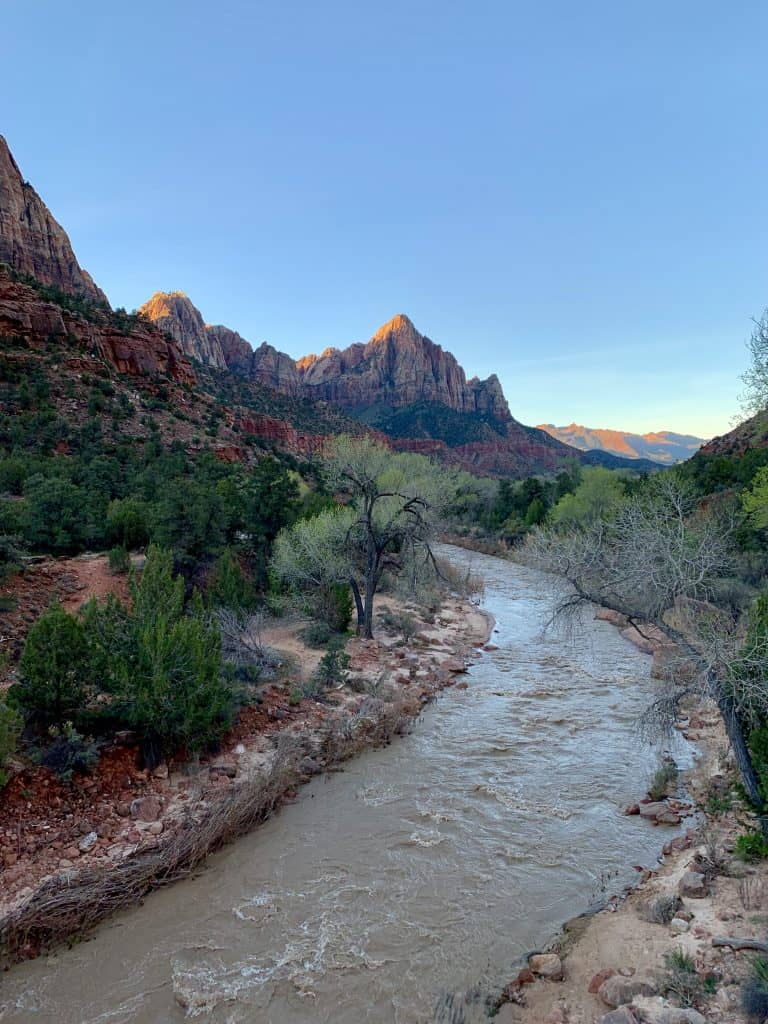 beautiful view of the Watchman at sunrise in Zion National Park
