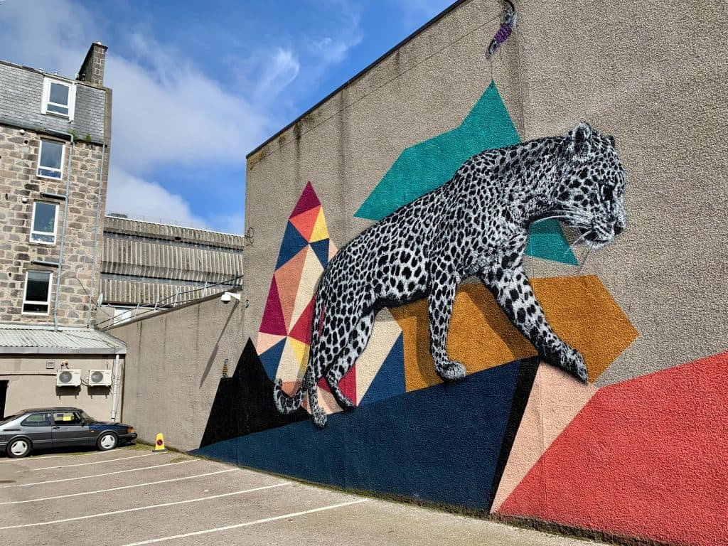 You can see how massive the leopard is, my favorite street art in Aberdeen