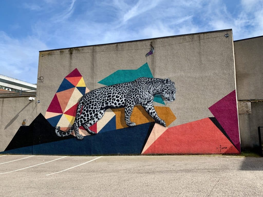 My favorite Aberdeen street art piece, the leopard