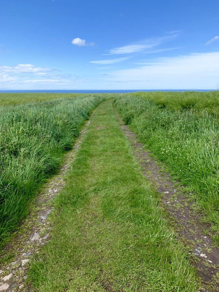 The walking path to Findlater Castle, Scotland