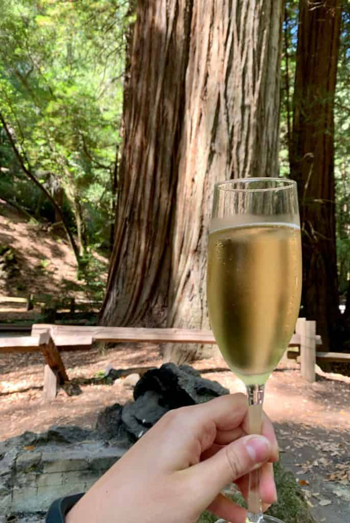 a champagne picnic in Armstrong Woods