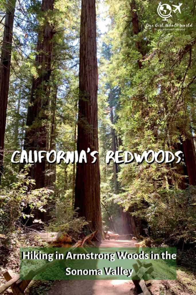 Armstrong Woods - hiking in Sonoma - Pinterest overlay