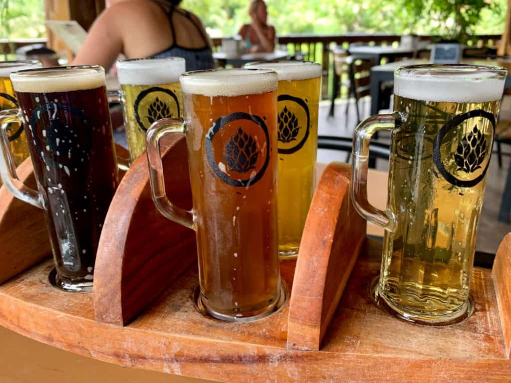 fuego brew co's delicious craft beer flight