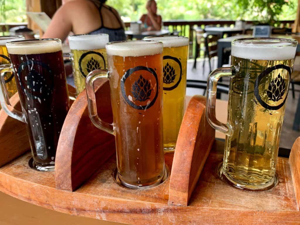 fuego brew co's delicious craft beer flight