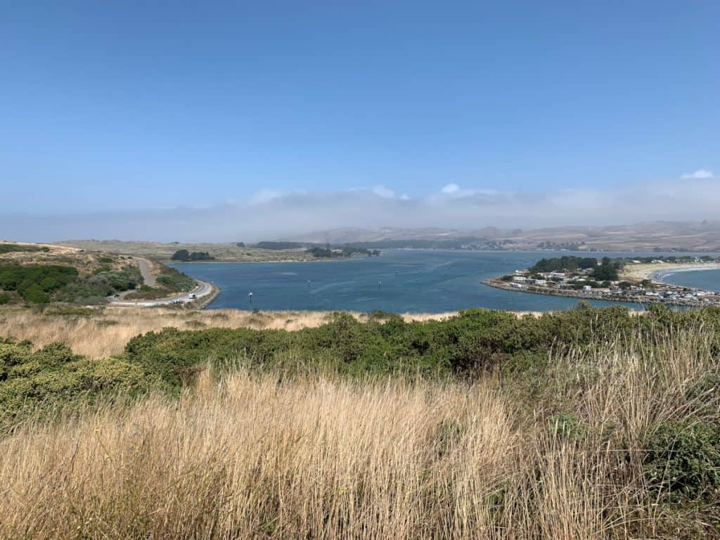 The inland view over Bodega Bay