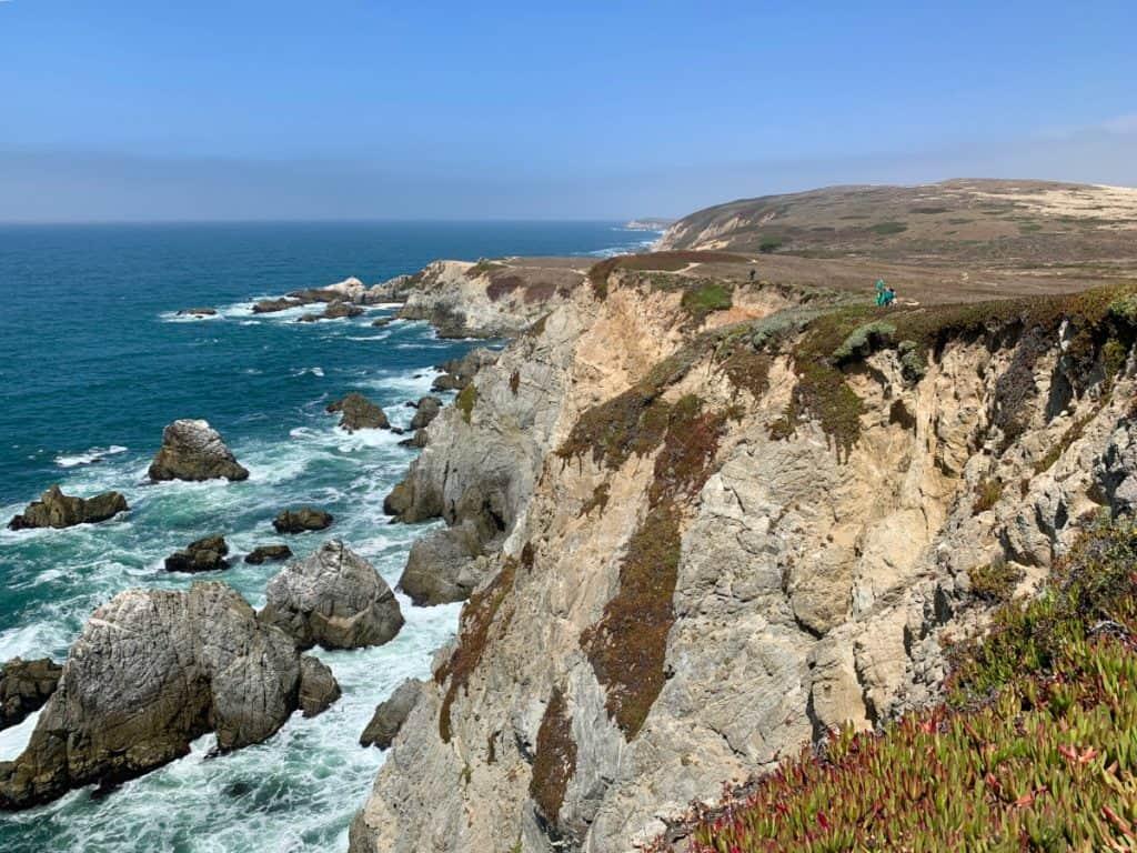 Gorgeous coastal views from Bodega Head Trail