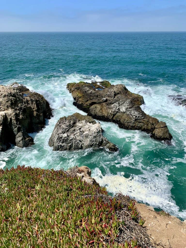 Hiking California's Gorgeous Bodega Head Trail (Sonoma Coast) | One Girl, Whole World