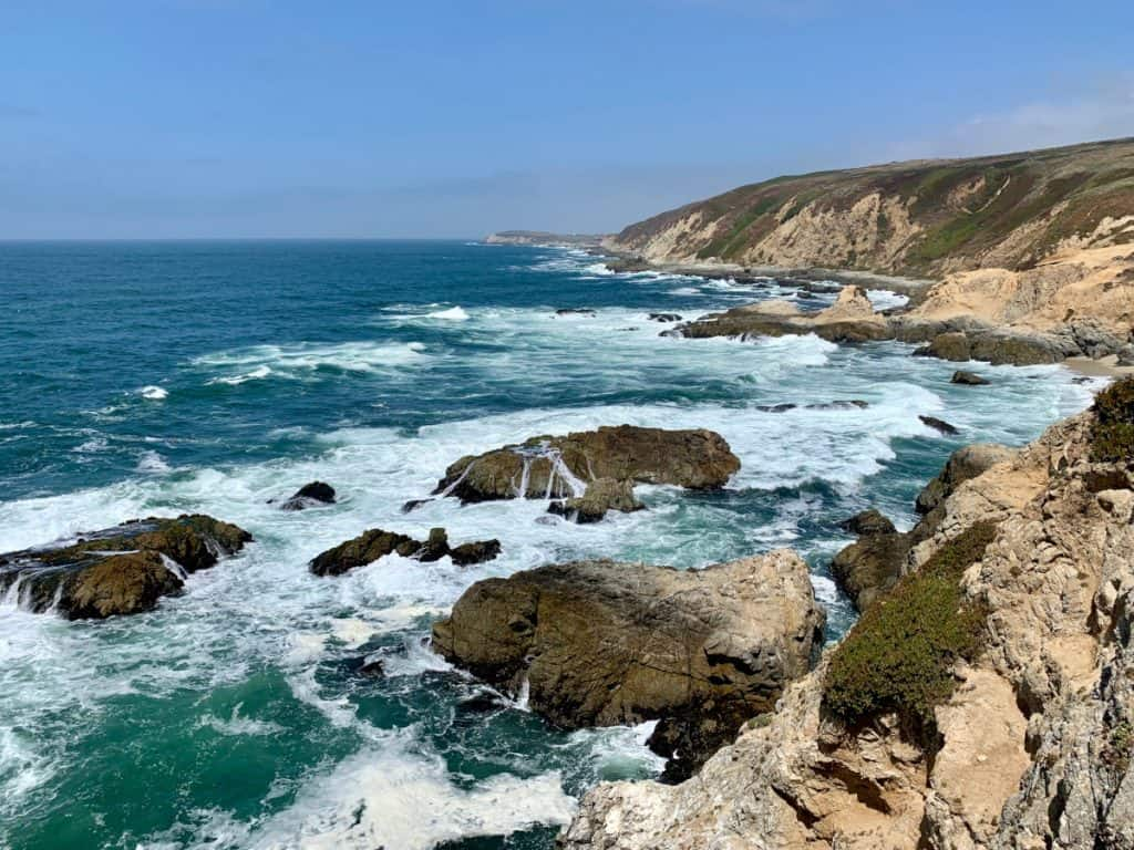 Blue skies and turquoise water on Bodega Head Trail