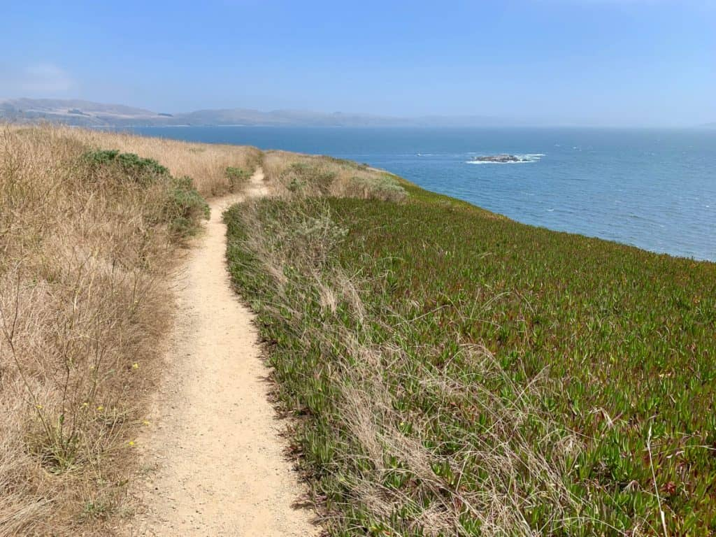 Easy though narrow trails at Bodega Head