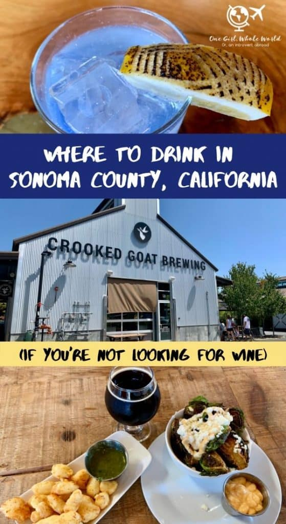 Where to Drink in Sonoma County if You Don't Want Wine | While the area is known for wine, there are so many Sonoma County breweries, ciders, distilleries, cocktails, and more to explore! Plan your trip to northern California and mix things up with your winery visits! #sonomacounty #brewery #california