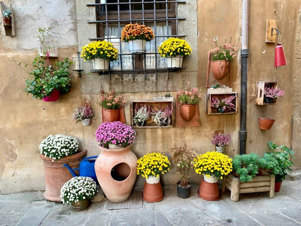 Beautiful colors and flowers in Cortona, Italy