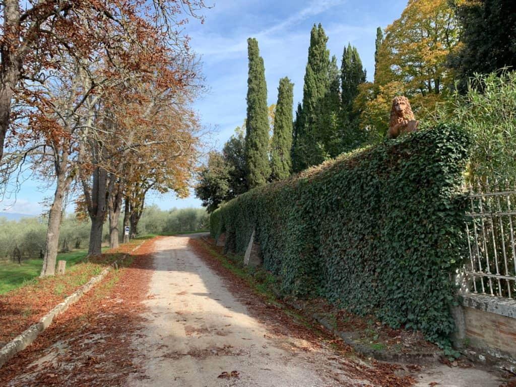 Visiting a winery outside of Cortona, Italy
