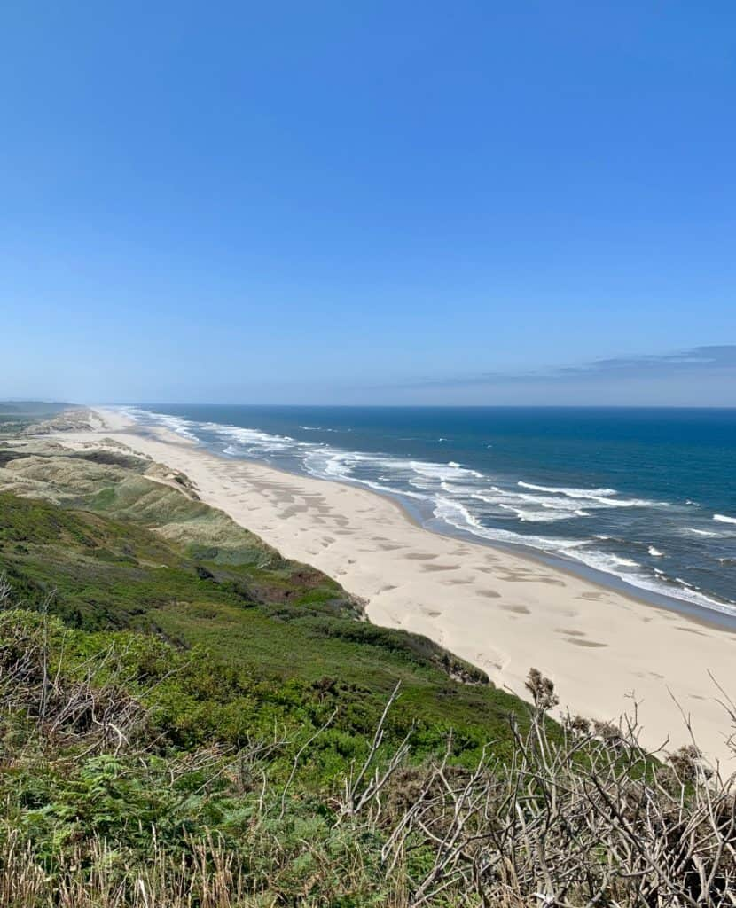 Stop for beautiful views along the Oregon coast - what to do on your trip