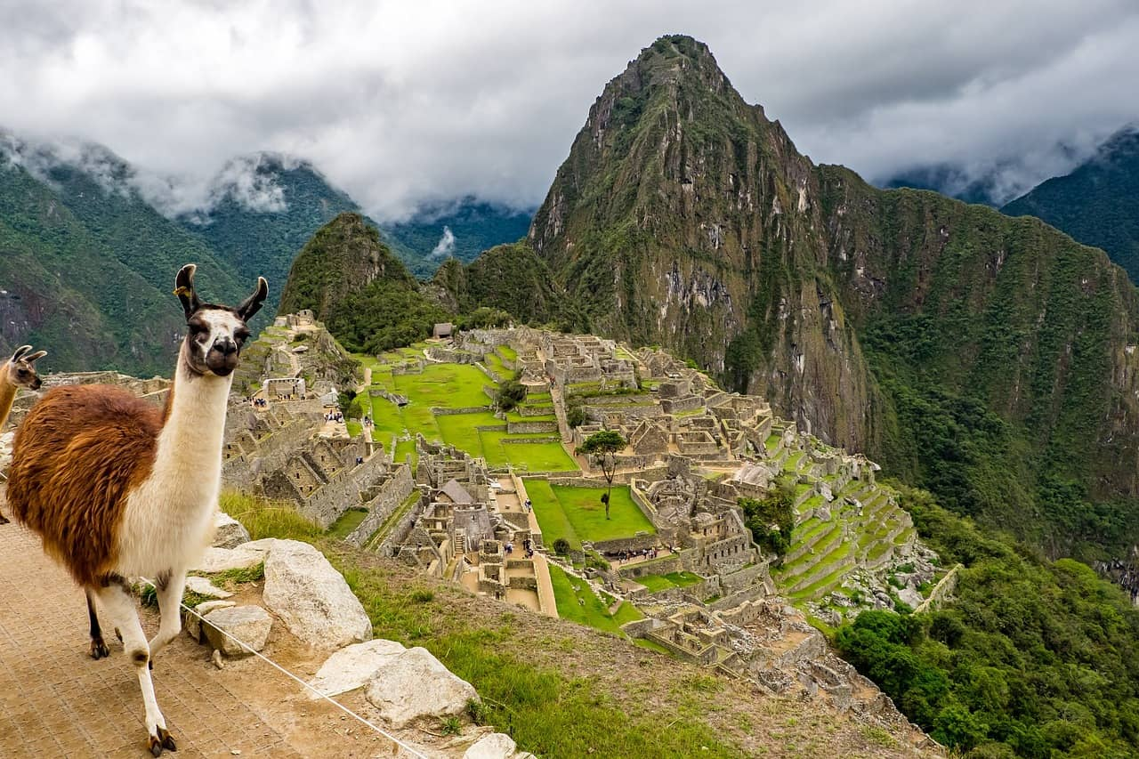 Llama selfies at Machu Picchu...a must for any travel bucket list