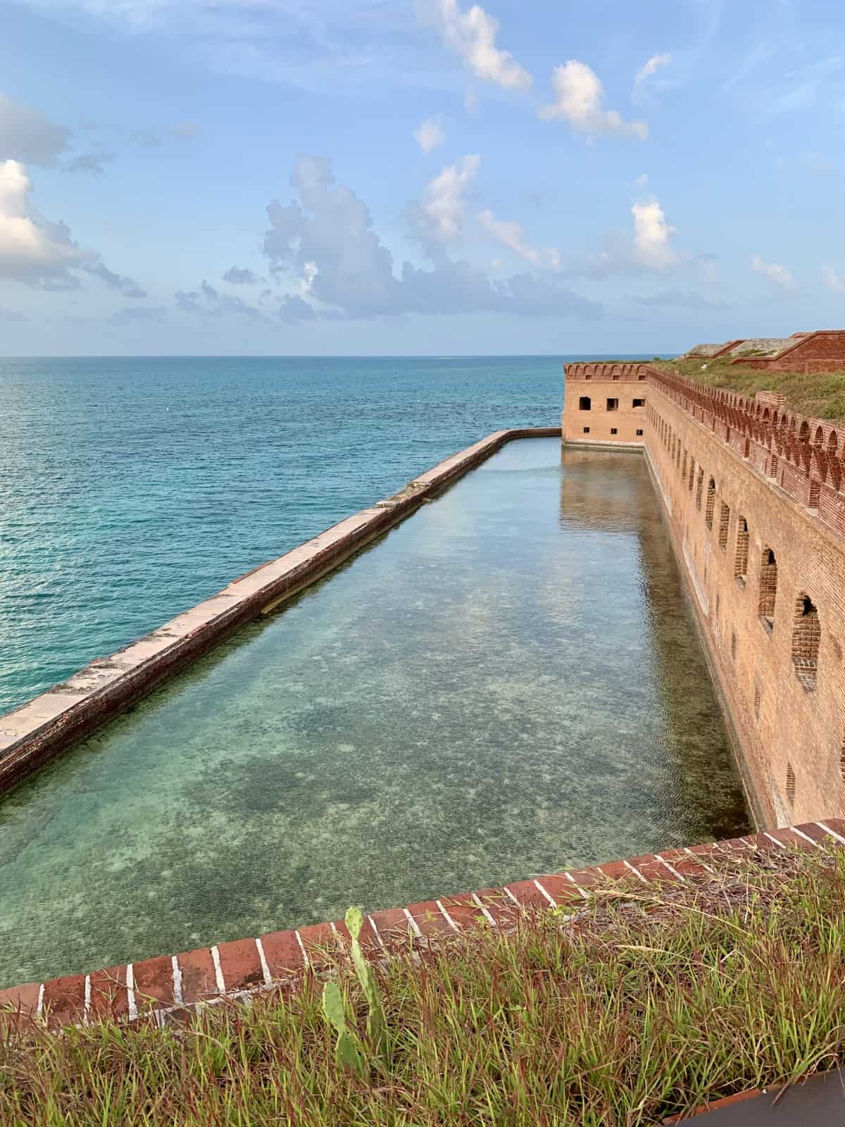 The moat around Fort Jefferson is gorgeous and great for snorkeling